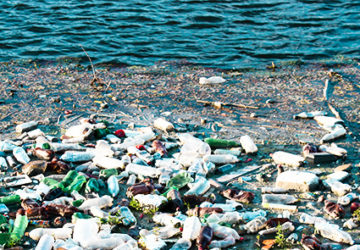 What are the Worst Causes of Water Pollution?