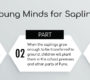Young Minds for Sapling