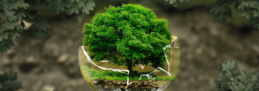 Environmental protection and conservation