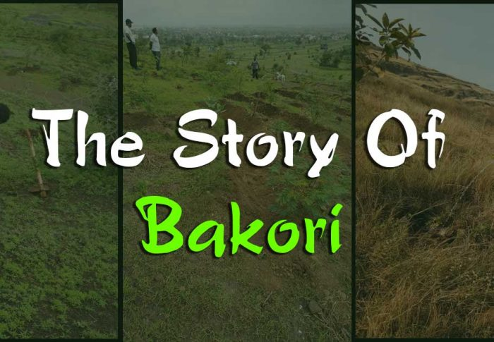 The Story Of Bakori